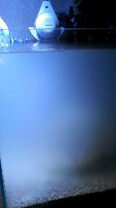 20140126223755-747.jpg