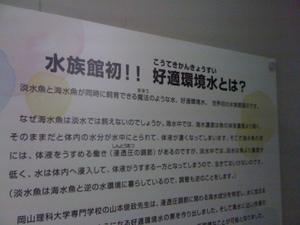 Img_0439_koteki_3