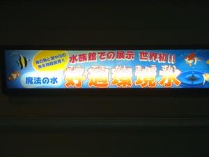 Img_0453_koteki